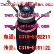 MHYBV钢丝编织信号电缆图片