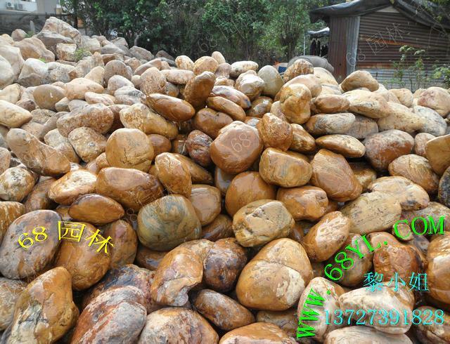 供应黄腊石销售/天然圆的黄腊石批发/黄蜡石造景石/独石