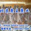 供应山西夏县梅花鹿养殖商场,北京鹿王鹿业梅花鹿养殖基于地