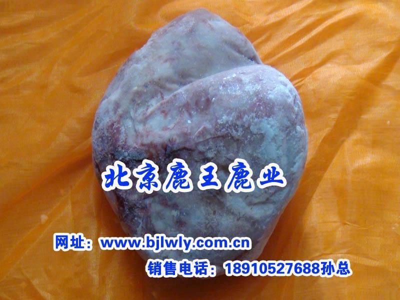 供应2012年广东梅花鹿肉批发