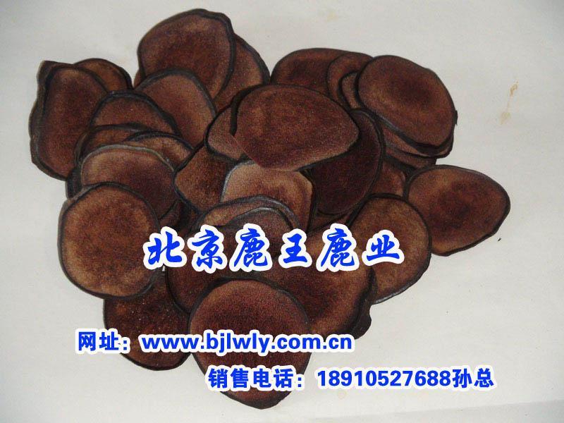 供应2012年四川梅花鹿肉批发