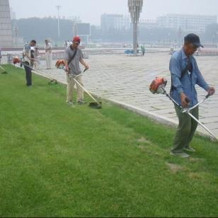 割灌机厂家郑州嘉盛园林图片