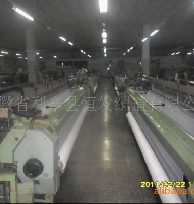 DPP160目服装印花网纱网布图片/DPP160目服装印花网纱网布样板图 (3)