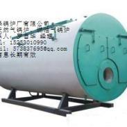 绉城WNS燃油燃气锅炉图片
