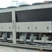 供应广东省然泵机组中央空调机组回收图片