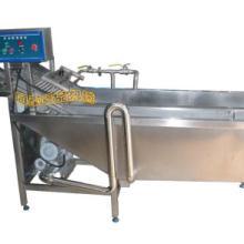 供应蔬菜洗泥机,果蔬清洗机,毛刷清洗机