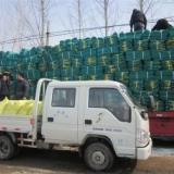 建筑安全网价格,江西九江建筑安全网厂价直销,生产厂家,报价