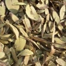 供应植物原药材铁包金