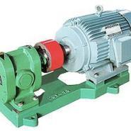 2CY高温齿轮泵/齿轮油泵/齿轮泵图片