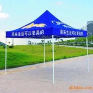 供应大量供应高档广告折叠帐篷 户外帐篷