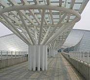 超大型异形钢结构图片