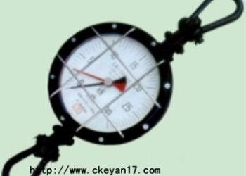 NK-50推拉力计图片