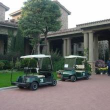 供应高尔夫球车与维修高尔夫球车配件厂家直销图片