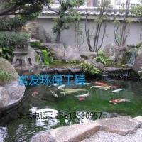 三民市户外景观鱼池水生物处理工程