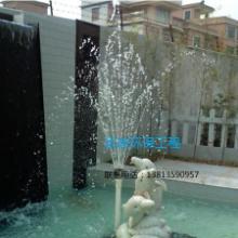 供应衢州市专业景观鱼池水处理净化循环于一体,技术最先进。