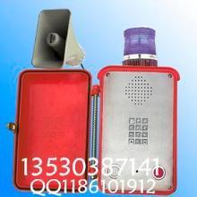 免提扩音电话KNSP-15MT 扩音电话机 防水电话 声光电话机