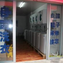 供应金华投币式洗衣机