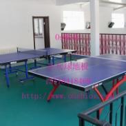 温州乒乓球室内地板批发图片