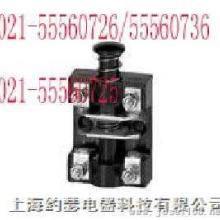 供应LX029LX1-11H柱塞式