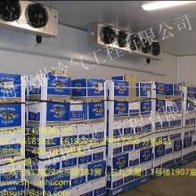 供應牛奶/啤酒冷庫/冷庫設計 牛奶冷藏庫 啤酒冷庫 冷庫設計安圖片