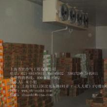 供应大型食品饮料冷库/冷库造价/冷库安装