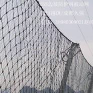 广元被动防护网DO/08/150/250/200图片