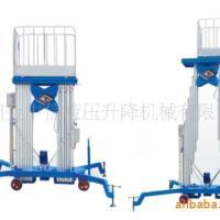 供应新疆铝合金式升降机99广州升降机
