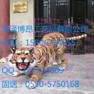 太原动物模型老虎照相动物园火爆图片