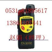 供应氨气检测仪氨气检测仪EX2000