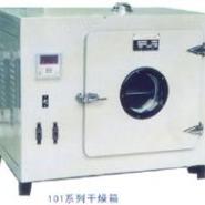 101-3鼓风干燥箱图片