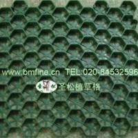 塑料植草格,广州植草格,广东植草板,植草格厂家,植草格报价