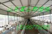 波尔山羊养殖场图片/波尔山羊养殖场样板图 (2)