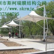 锦州工大乒乓球场张拉膜工程定制图片