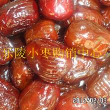 山东乐陵小枣购销服务中心专业供应代加工无核蜜枣图片