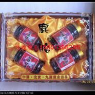 深圳梅花鹿养殖基地梅花鹿图图片