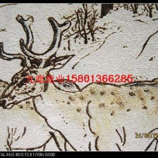 养殖梅花鹿梅花鹿吃什么梅花鹿图片