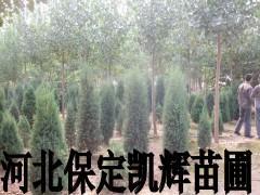 4米北京侩图片