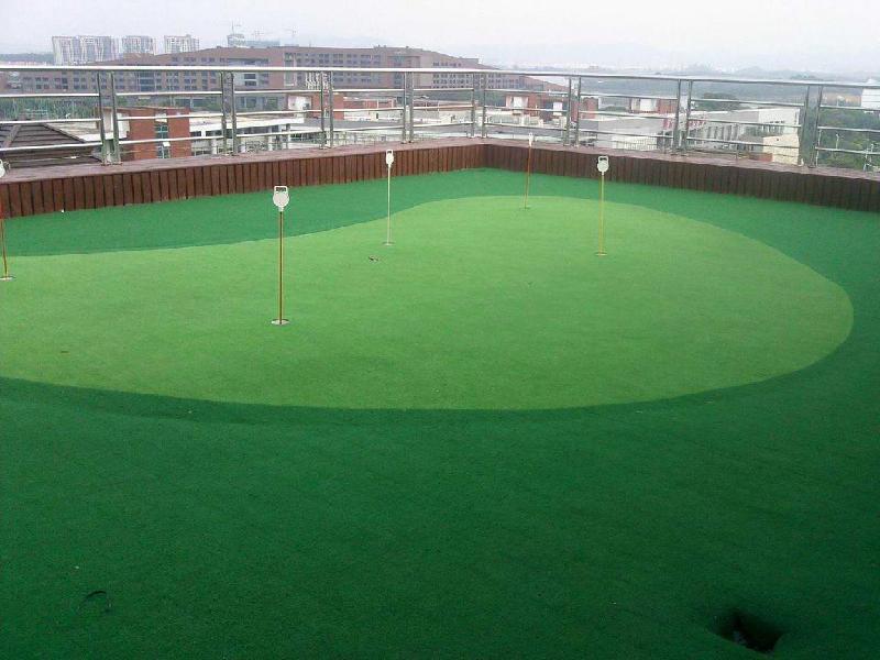由广州羲易数字高尔夫公司承建的广东体育职业技术