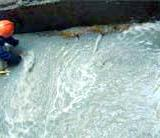 供应麻章物业维修防屋卫生间防水补漏