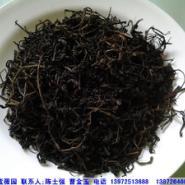 青钱柳苗/青钱柳茶价格图片