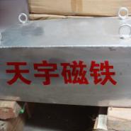 石家庄哪有卖洗煤厂用的强磁除铁器图片