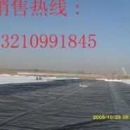 山西浑源厂房屋顶防潮防水板图片