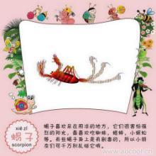 供应大雁会在纸上张开翅膀飞翔的启蒙儿童玩具,非常好玩批发