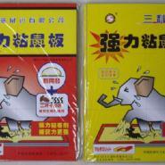 徐州三利粘鼠板图片