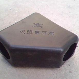 徐州老鼠图片