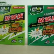 徐州害虫防治图片