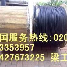 室内光纤一米多少钱安普室内多模光缆安普室内单模光缆图片