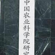 精刻木匾木板奖牌图片