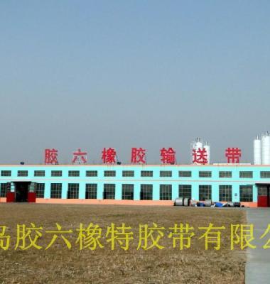 输送带厂家青岛胶六橡特胶带图片/输送带厂家青岛胶六橡特胶带样板图 (1)