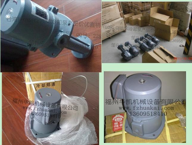 供应台湾油泵YEONGCHYUANINDUSTRIES